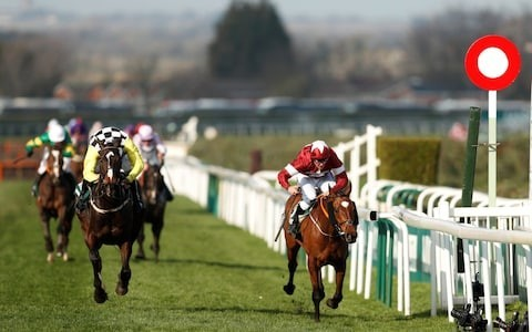 Top Festivals to Attend for Racing Fans