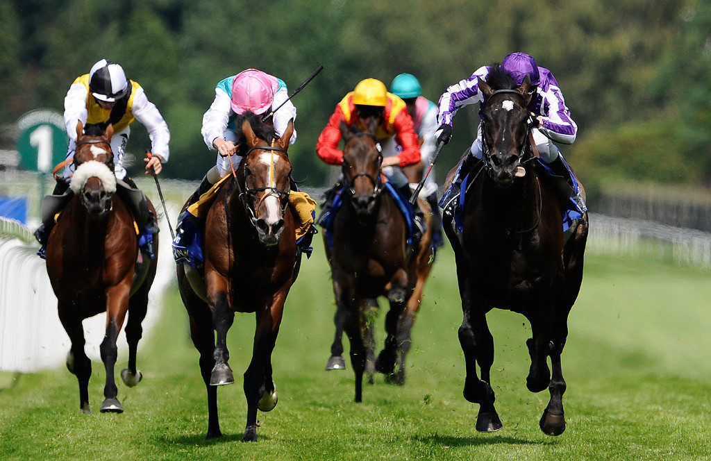 10 Compelling Horse Racing Facts