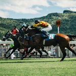 horse-race-sports-racing