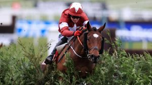 Grand National 2020 - Ones to Watch!